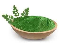 moringa-leaf-powder